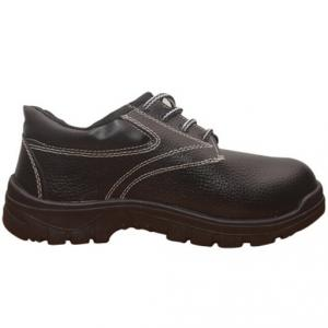 Safari Racer Model Safety Shoes