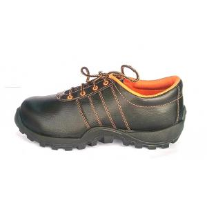 AG Rock Plus Steel Toe Safety Shoes, Size: 9