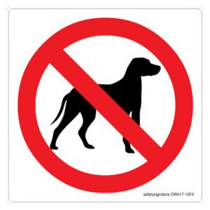 Safety Sign Store No Dogs Graphic Sign Board, CW617-105V-01