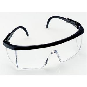 3M 1710IN Safety Goggles (Clear Lens Hardcoat)