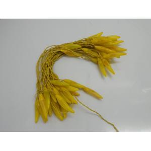 Tucasa Yellow Chilli String Light, DW-288